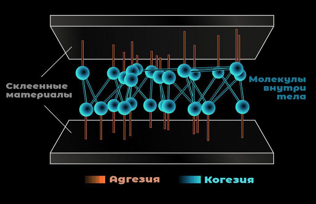 Когезия и адгезия — что это? И в чём их отличия?
